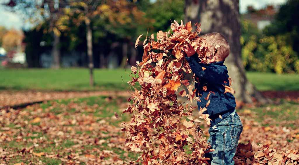 boy-playing-with-leaves