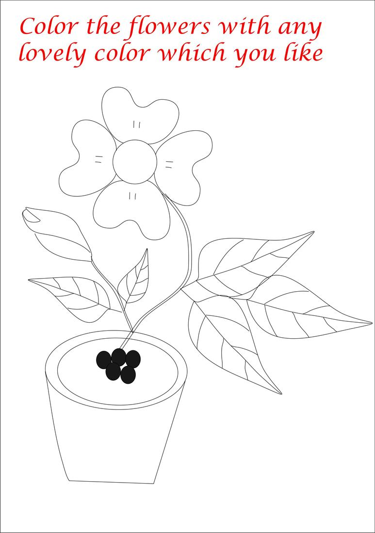 Coloring pages of flower pots - Coloring Pages Of Flower Pots 25