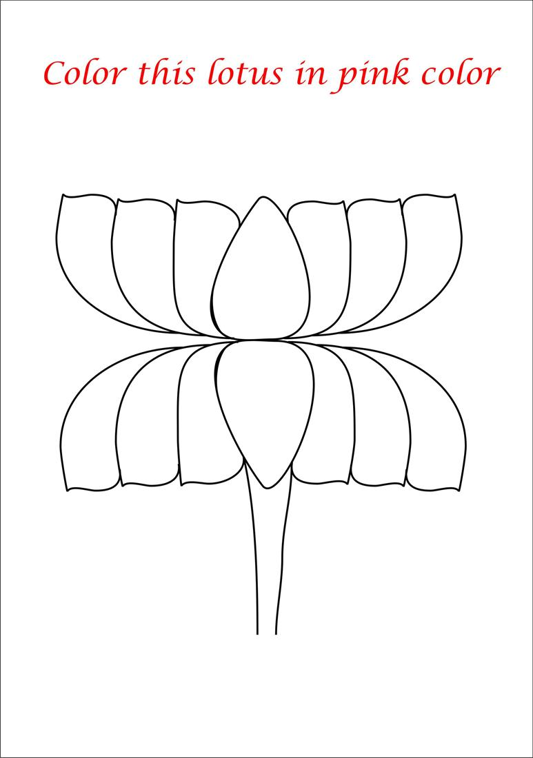 Pink lotus coloring page printable for kids