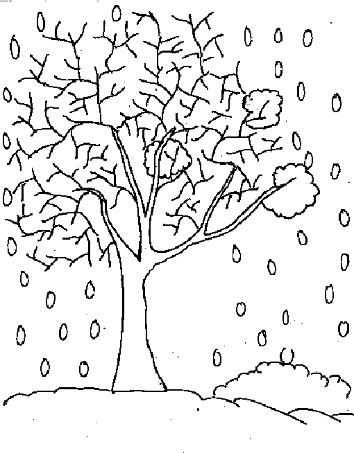 Winter Trees Colouring Pages Winter Tree Coloring Page