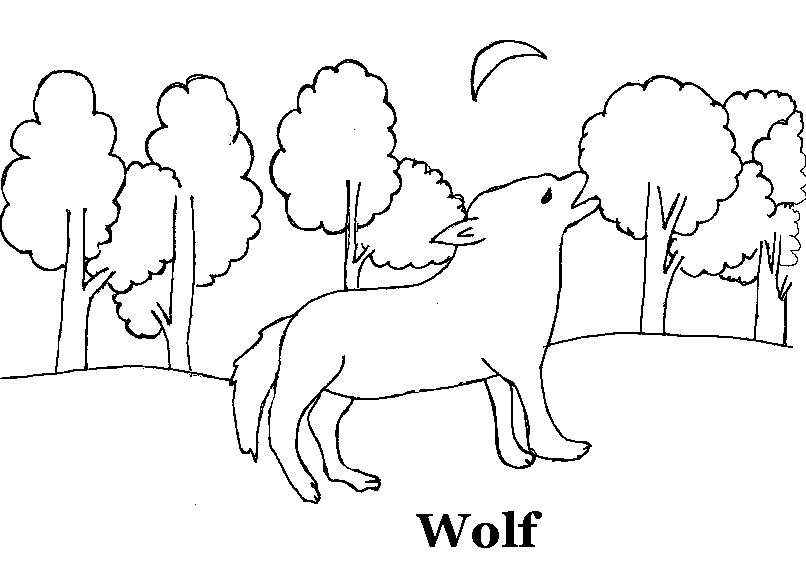 Wolf Coloring Pages Pdf : Wolf coloring printable page for kids