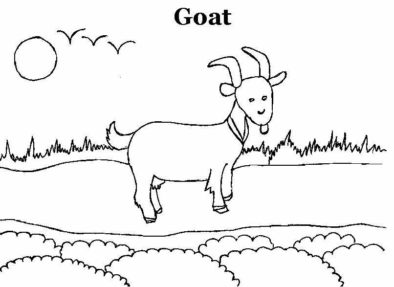 goat coloring printable page for preschool