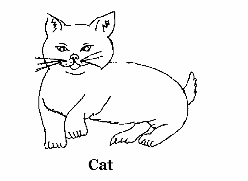 domestic animals coloring pages | Cat coloring printable page for kids