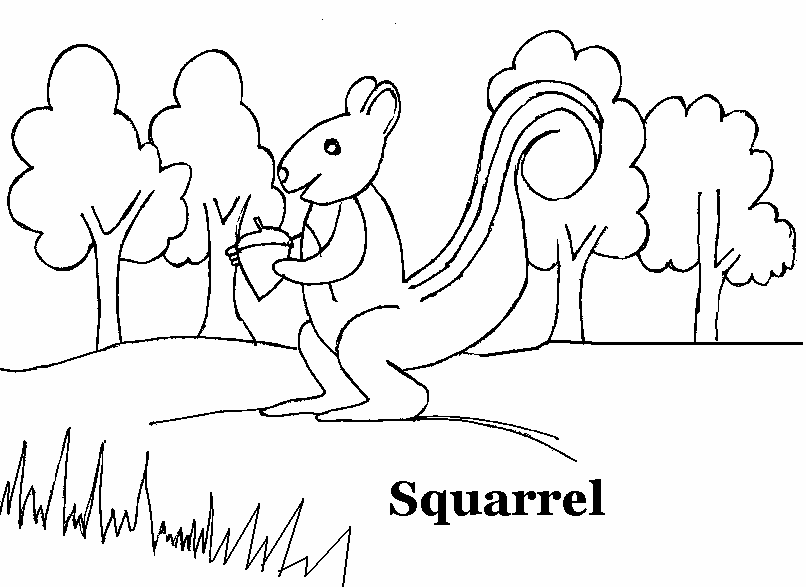 squirrel coloring printable page for kids - Printable Drawing Sheets