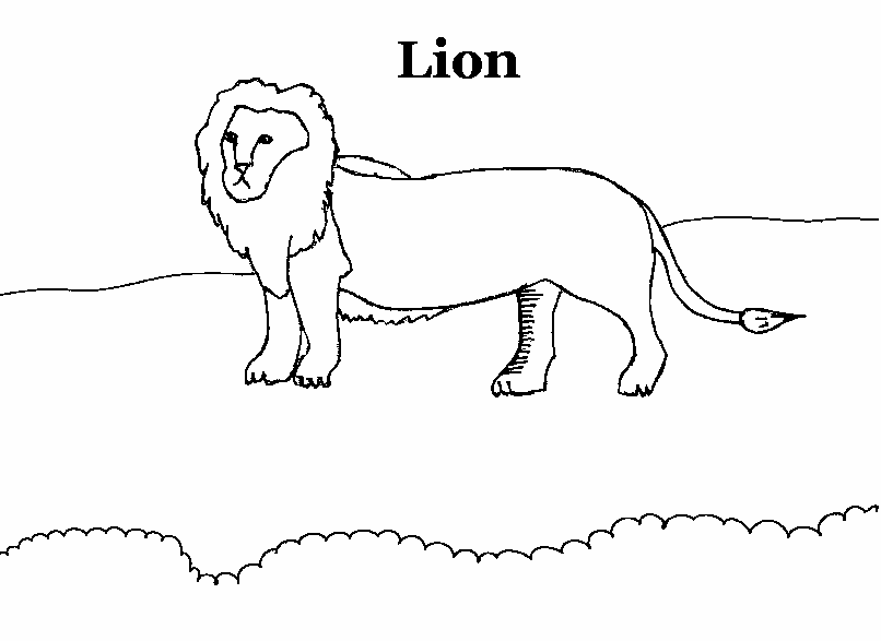 Lion Coloring Pages Pdf : Lion coloring printable page for kids