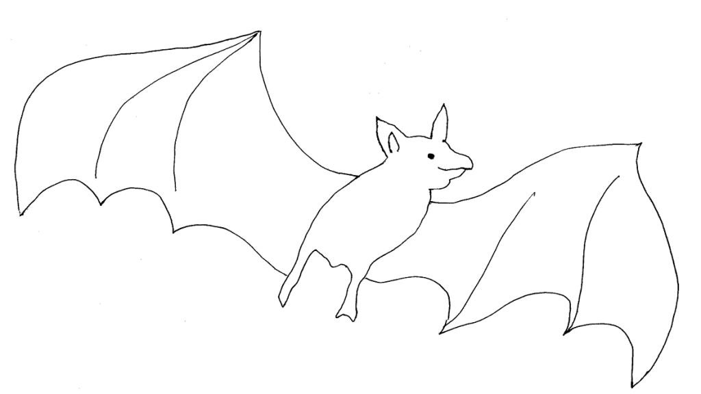 bat printable coloring page for kids