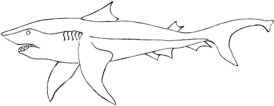 Killer shark printable coloring