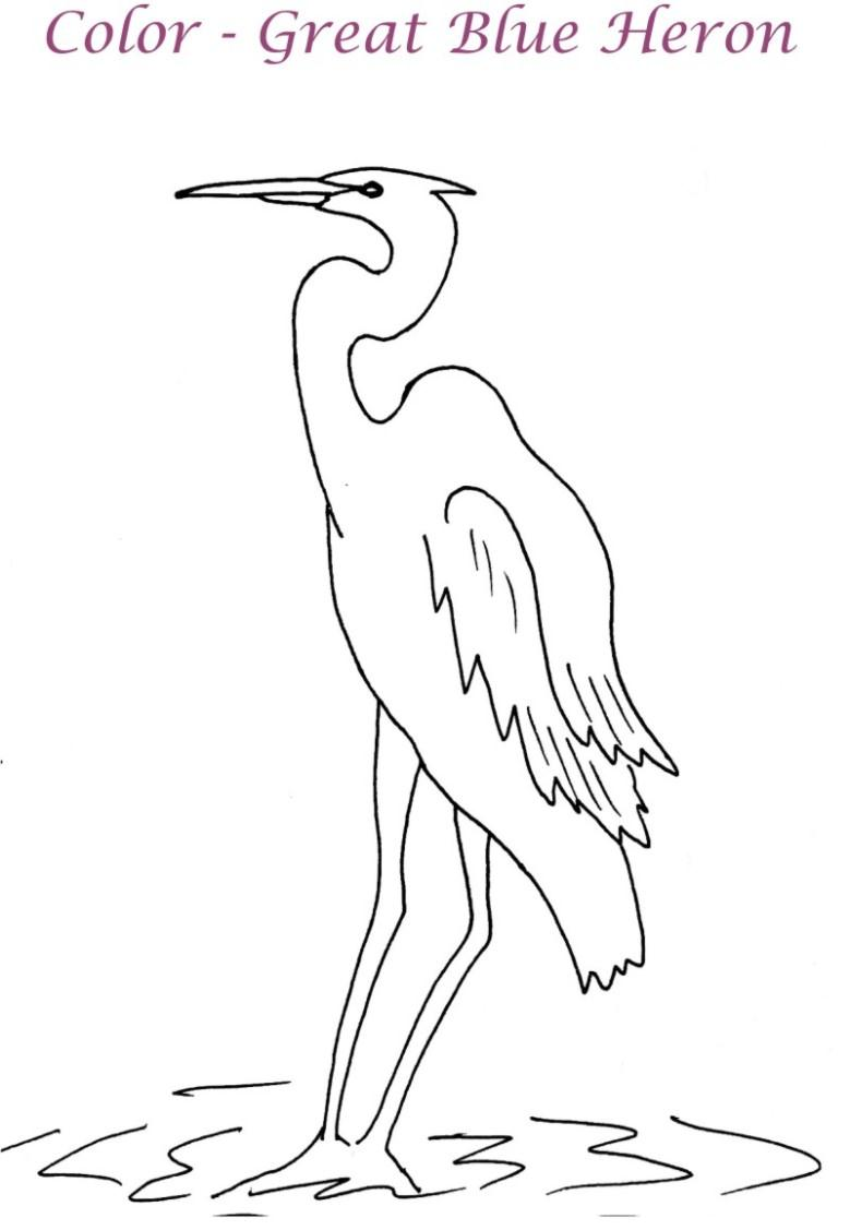 blue heron coloring pages - photo#12