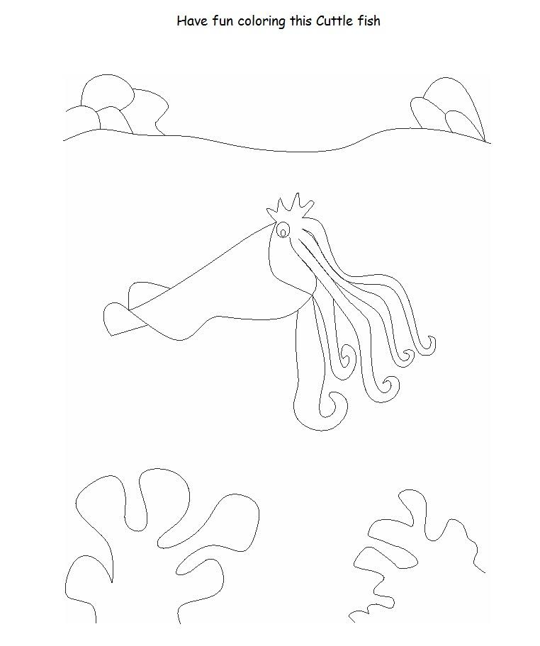 Cuttlefish printable coloring page for kids for Cuttlefish coloring pages