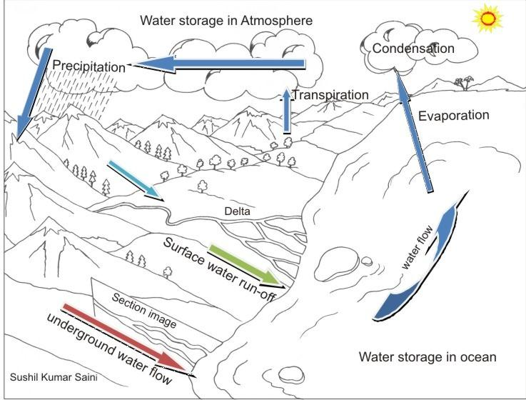 water cycle diagram colouring pages (page 3)