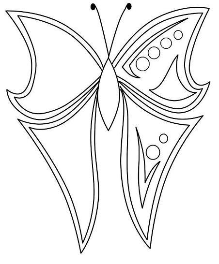 Butterfly Wing Drawing