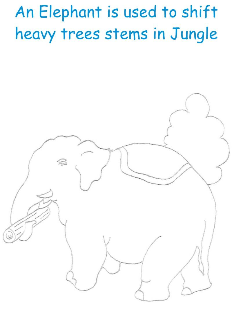 Elephant printable coloring page for kids