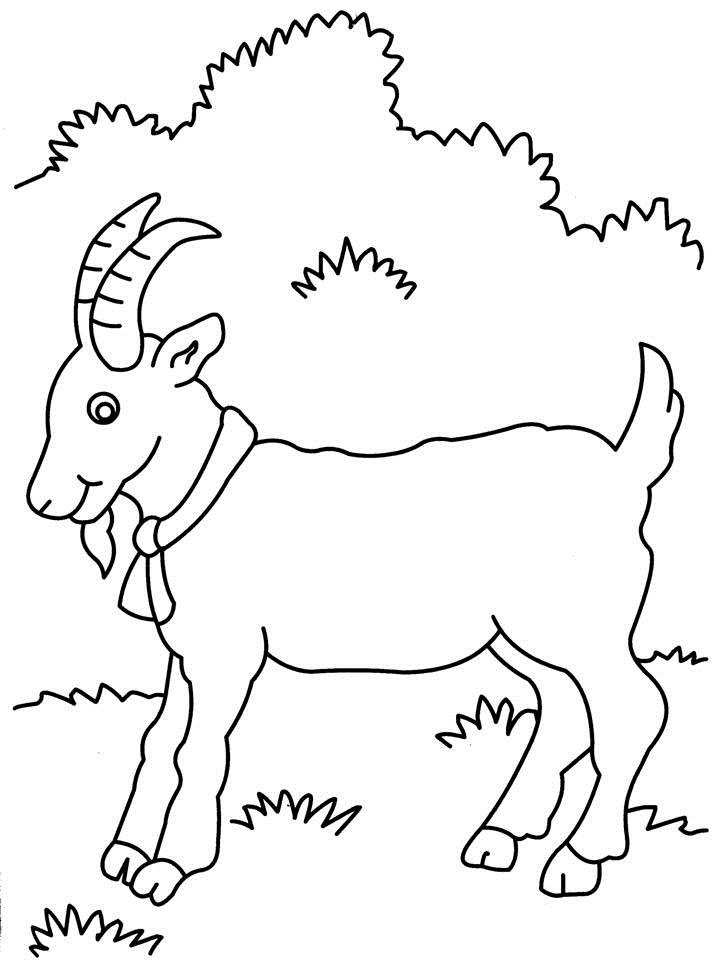 billy goat coloring pages - photo#22