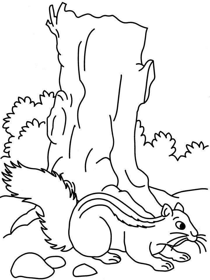 free coloring pages of simon squirrel