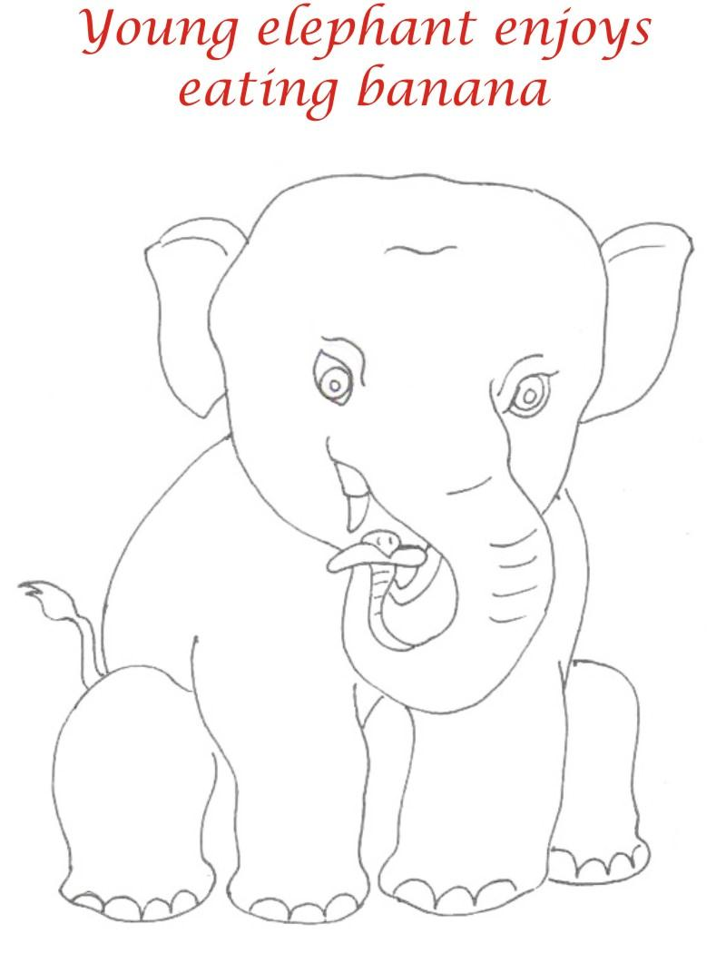 young elephant enjoys banana coloring page for kids