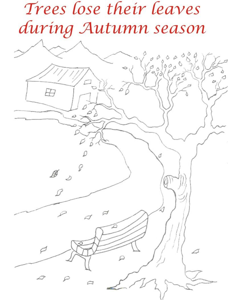 Autumn Season printable coloring pages for download