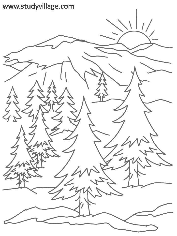 summer holidays coloring page for kids 16