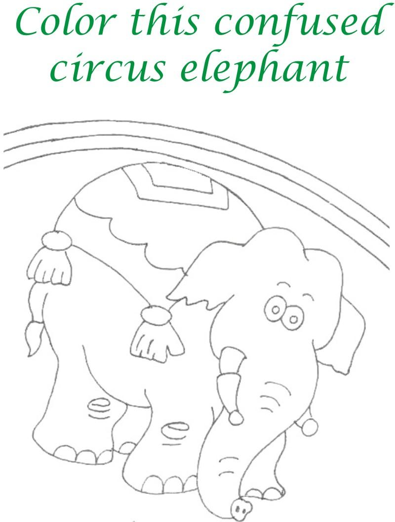 Circus printable coloring page for kids 12