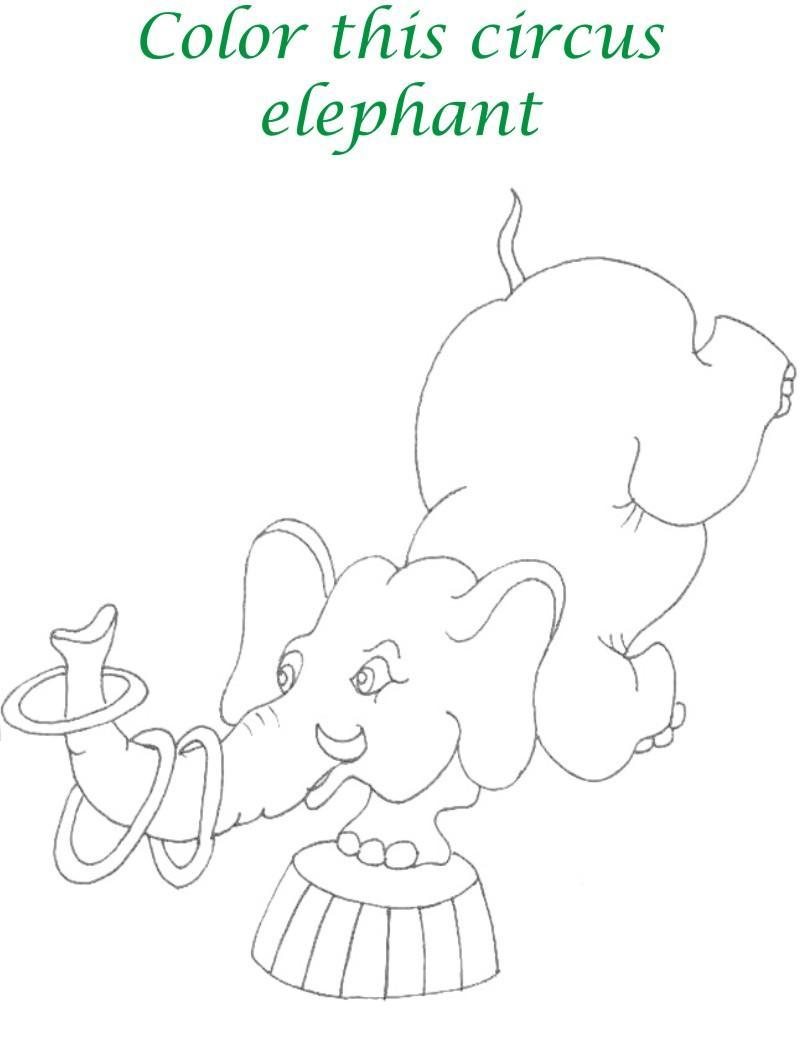 circus printable coloring page for kids 4