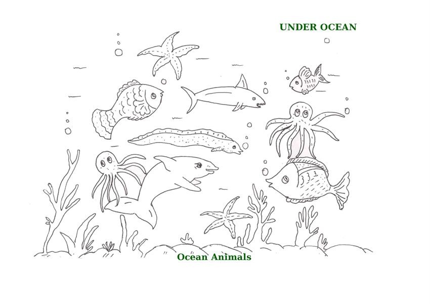 ocean animals printable coloring pages for kids 18 - Ocean Animals Coloring Pages