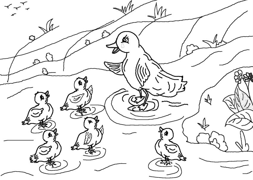 Free coloring pages of drawings of ugly duckling