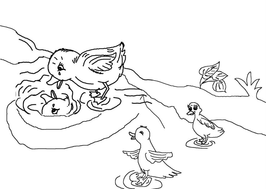 ugly duckling coloring page - photo #7
