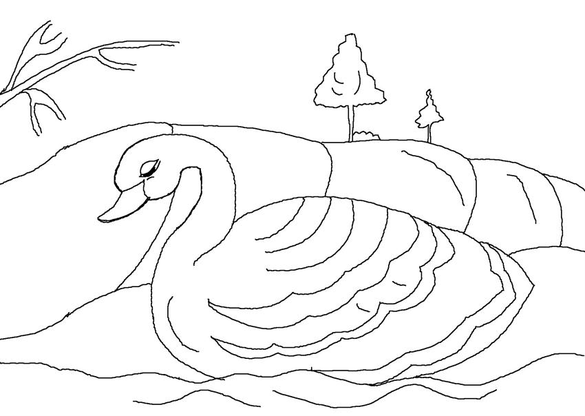 Free print the ugly duckling coloring