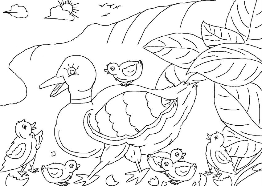 ugly duckling coloring page - photo #21