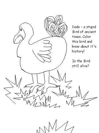 Dodo, the Stupid Bird - Coloring page