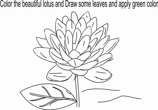 Lotus coloring page for kids