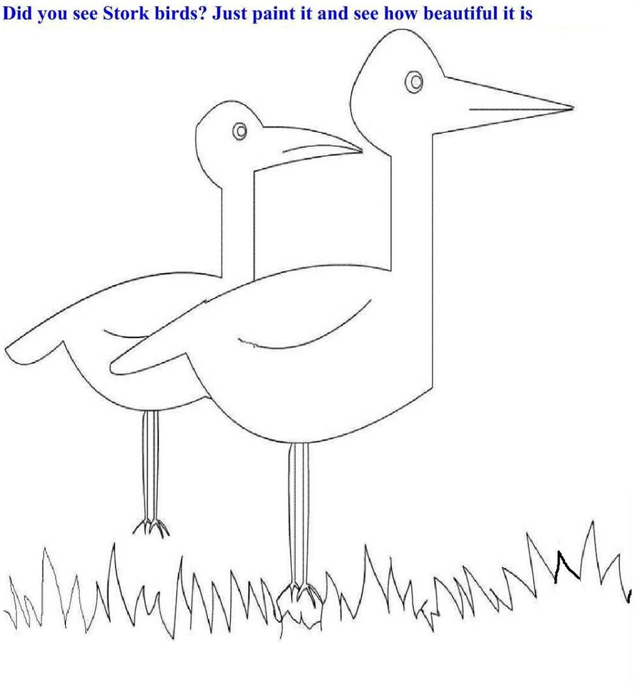 Stork birds coloring page printable