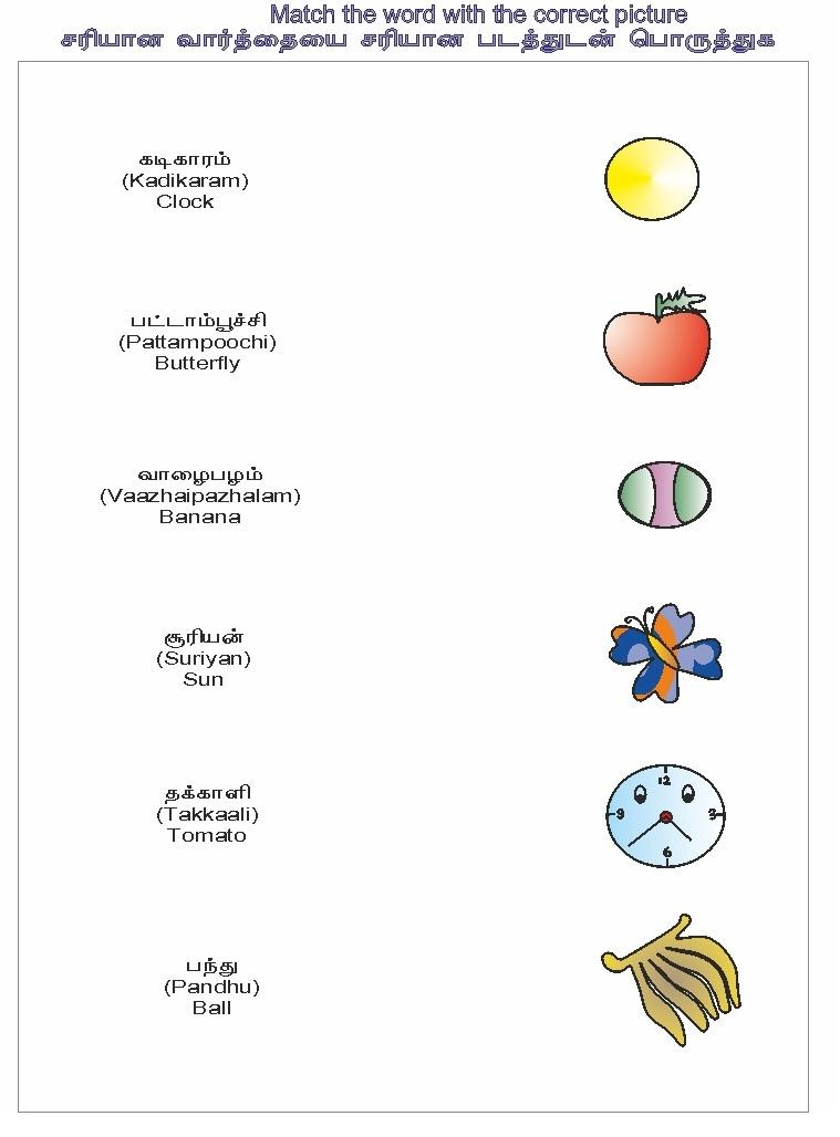 Match the correct object - Activity Worksheet2