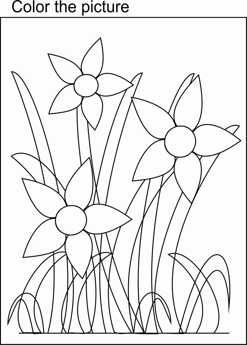 bunch of flowers coloring page for kids