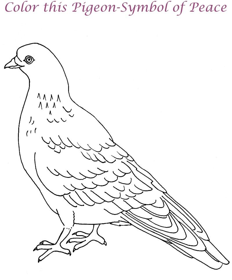 Dove printable coloring page for
