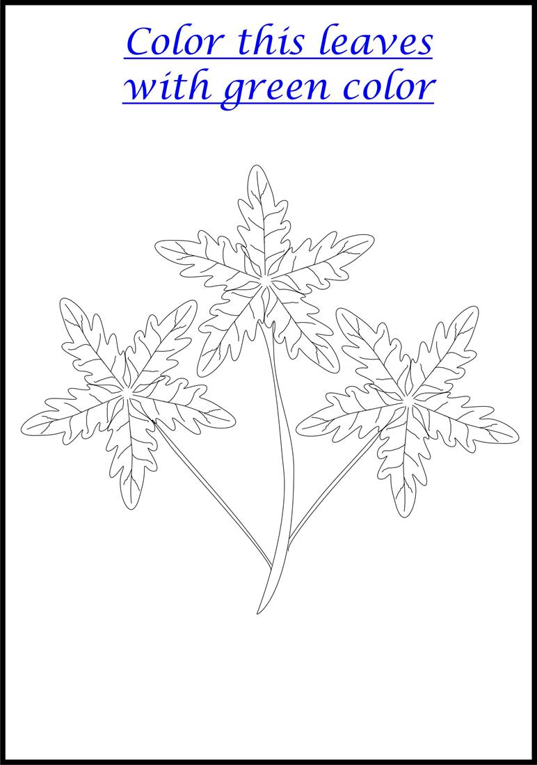 Beautiful leaves coloring printable page for kids