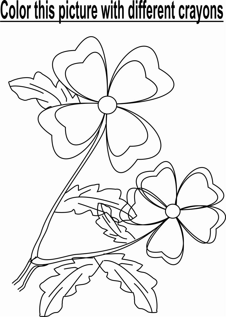 Flower in Garden coloring page
