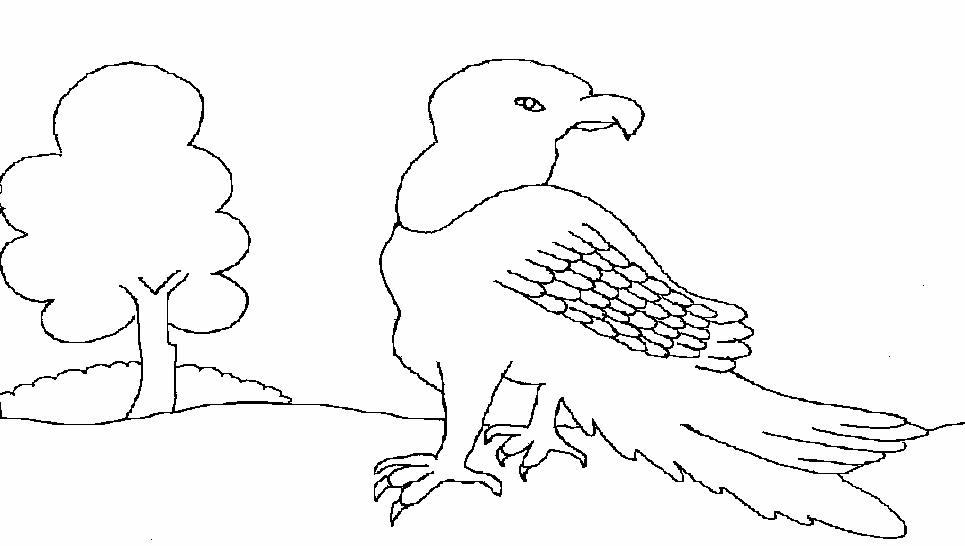 Vulture printable coloring page for kids
