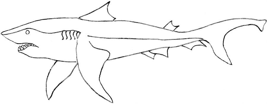 Killer Shark Printable Coloring Page For Kids