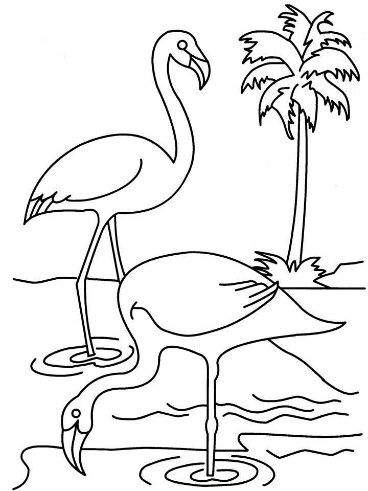 Two Swans Coloring Page