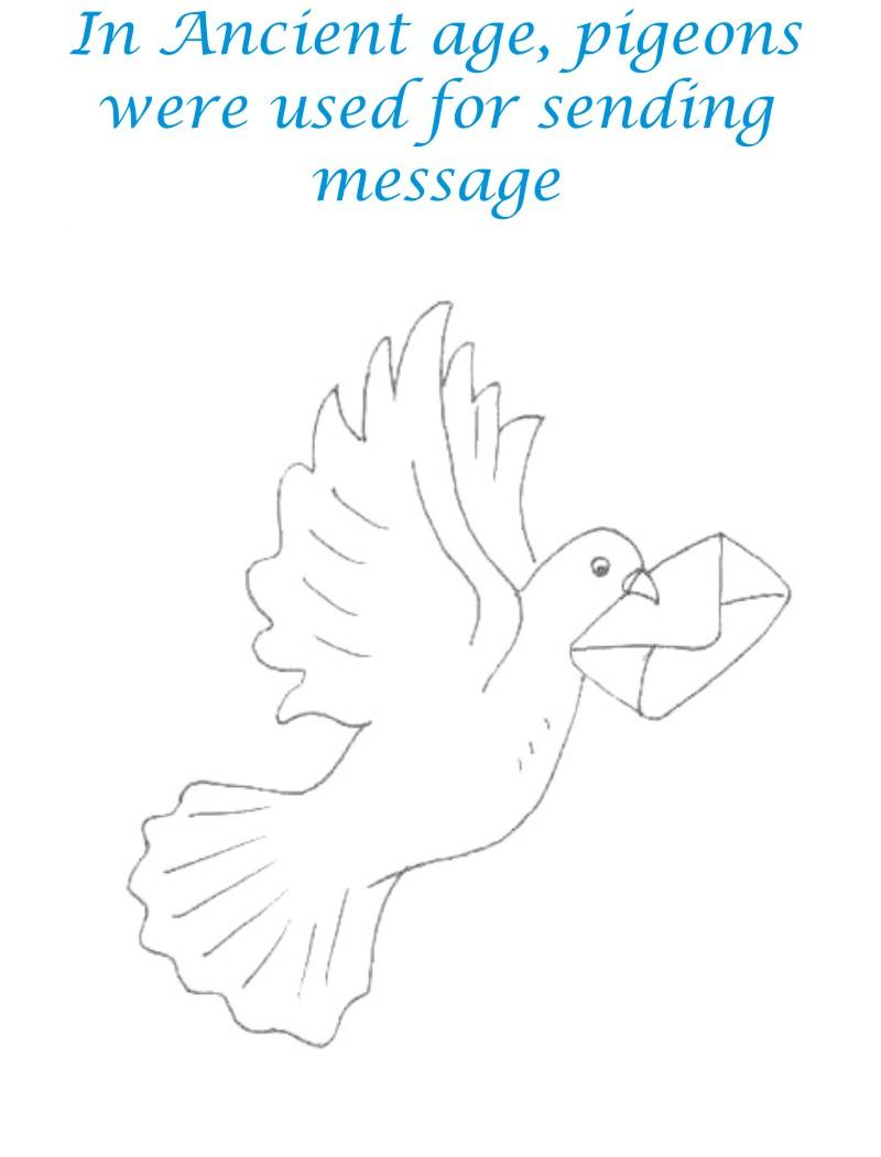 Pigeon as mean of communication coloring pages