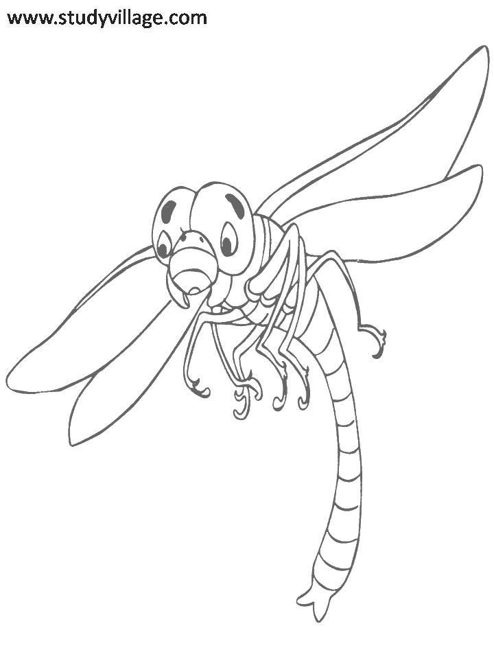 Funny Insects printable coloring page for kids 8