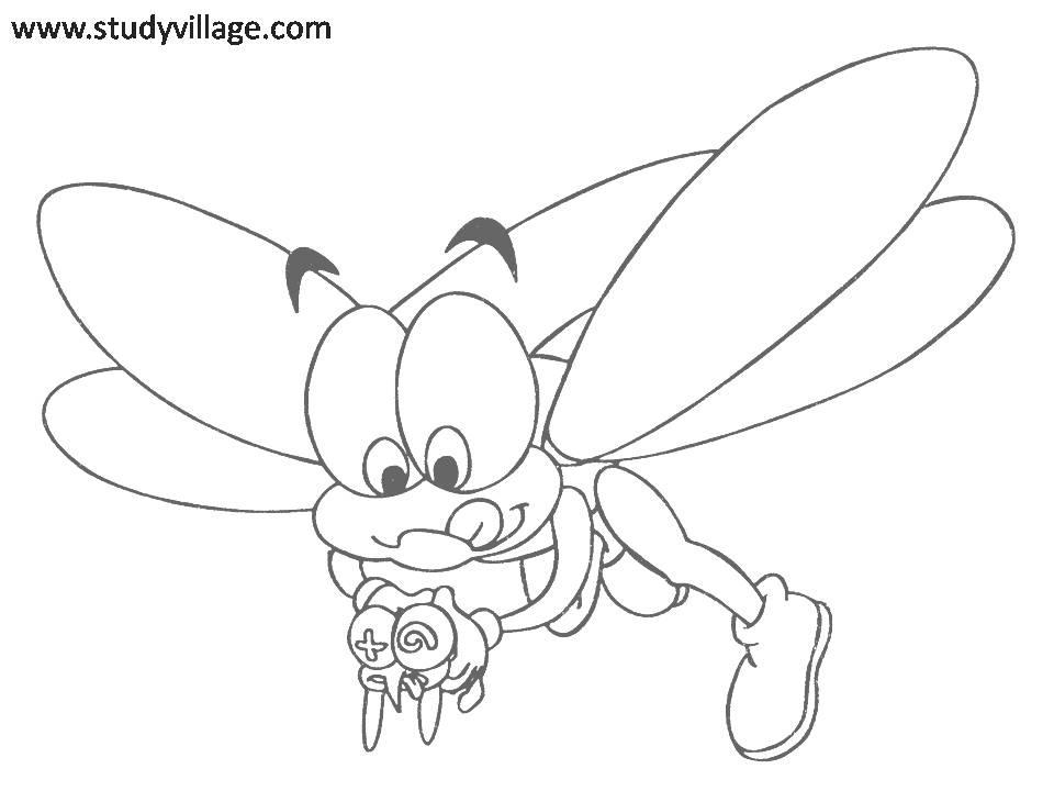 funny fly insects coloring pages - photo#2