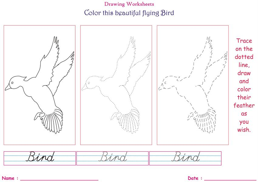 """Birds"" Coloring pages for kids -  Flying Bird"