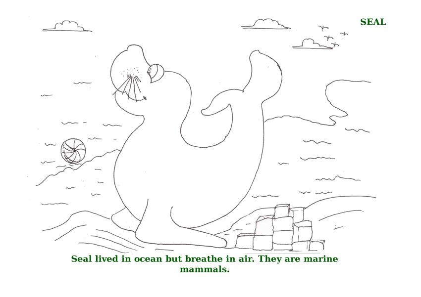 Ocean Animals Printable Coloring Pages for kids 9