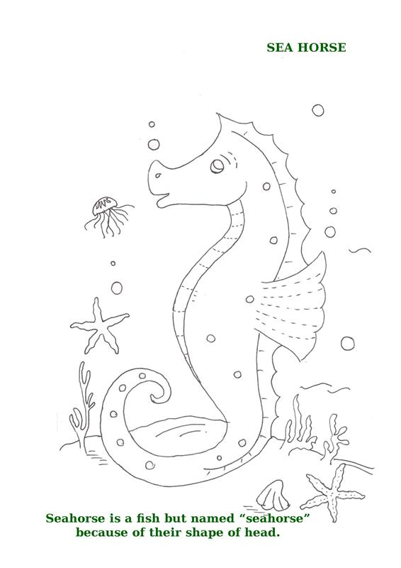 Ocean Animals Printable Coloring Pages for kids 10